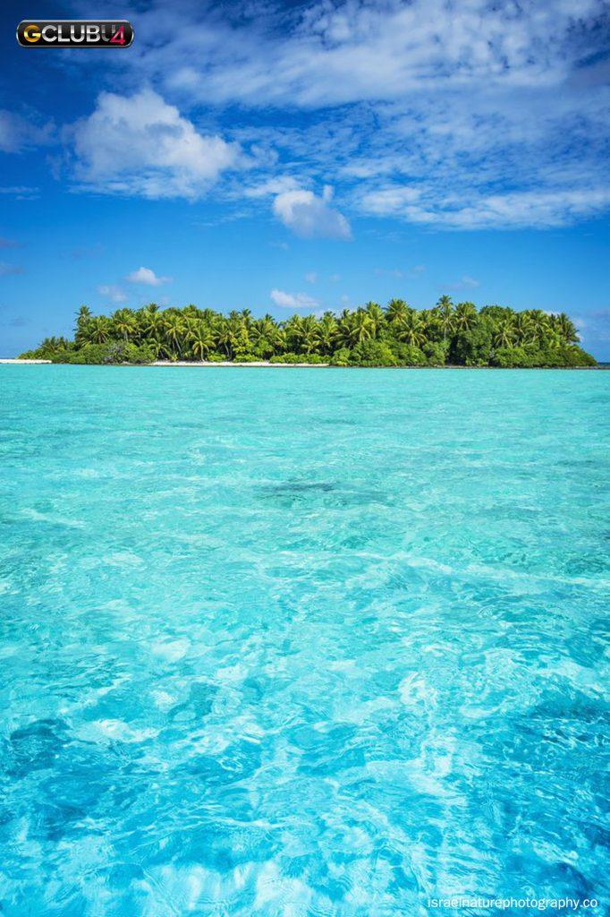 เกาะโพลินีเซีย