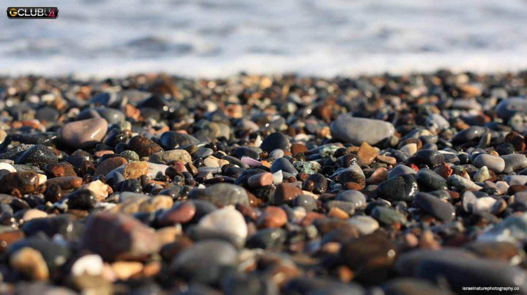 ชายหาดในมัสกัตโอมาน